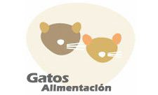 Gatos Alimentación Snacks